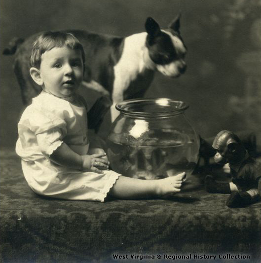 Boy, dog, and fishbowl