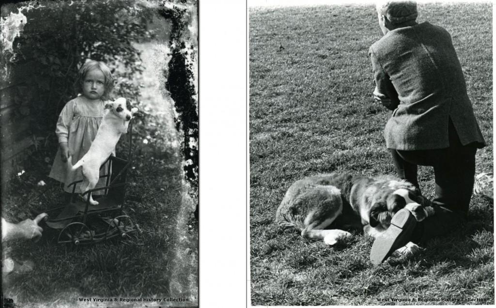 Girl with dog and man with St. Bernard dog