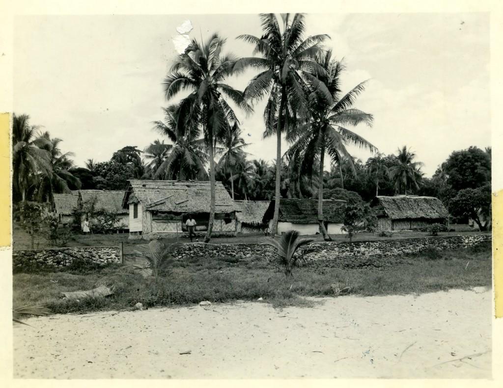 Native Dwelling, New Hebrides.