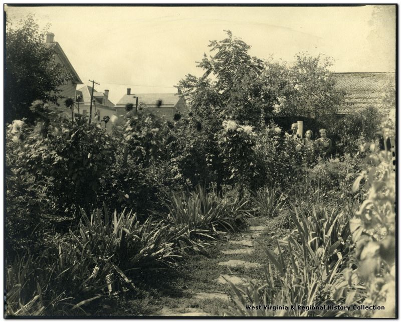 Flower Garden, Martinsburg, W. Va.