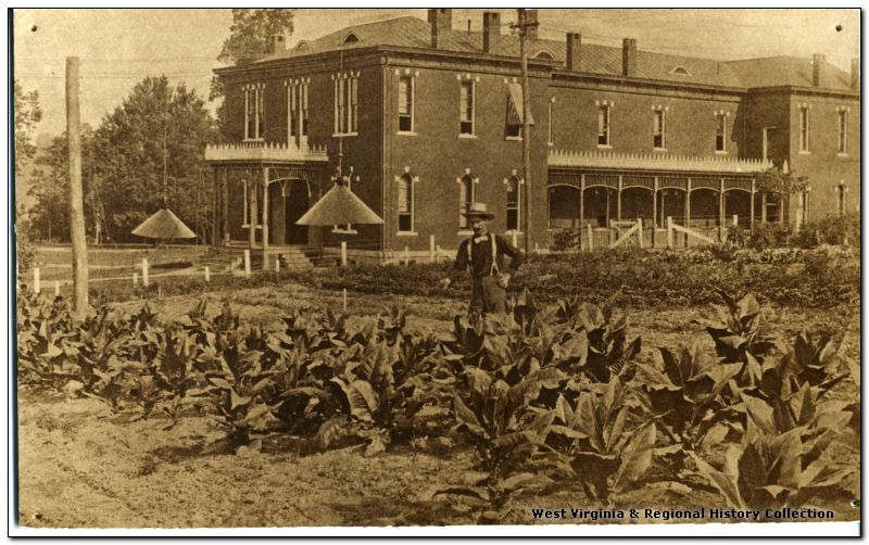 Tending to Crops near the Agricultural Experiment Station Building, West Virginia University