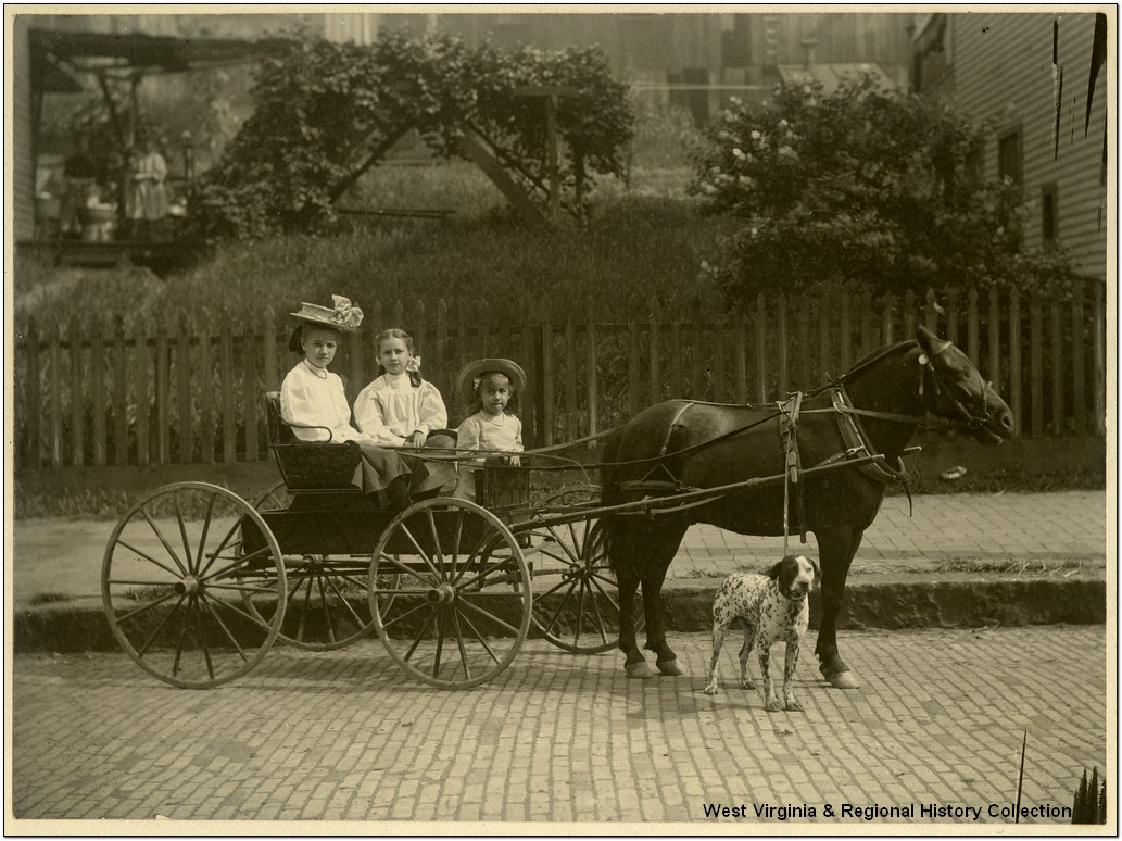 Girls with Dog, Cart and Pony Ride, Grafton, W. Va.