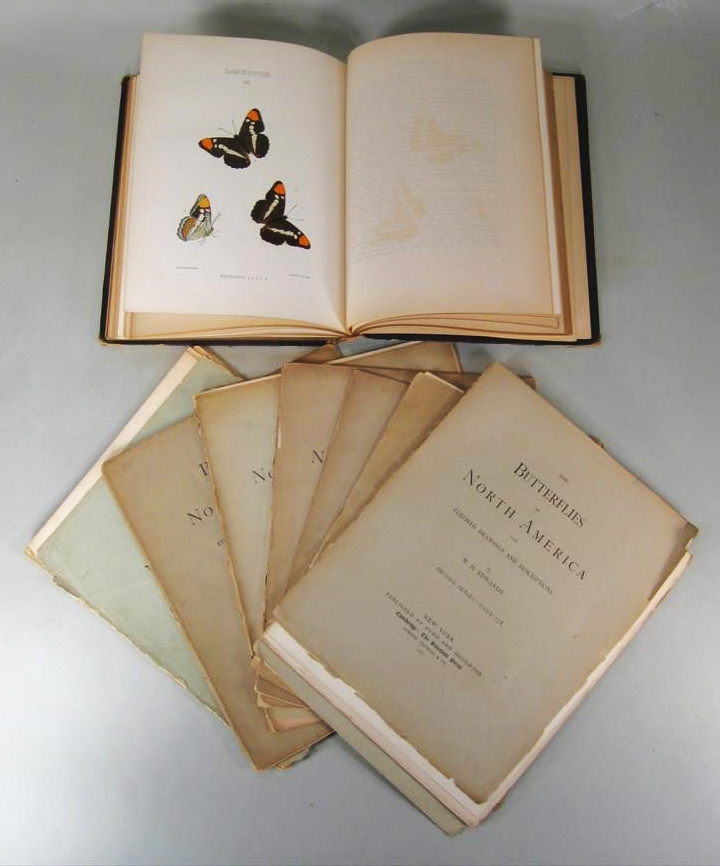 Parts of Edwards books Butterflies of North America