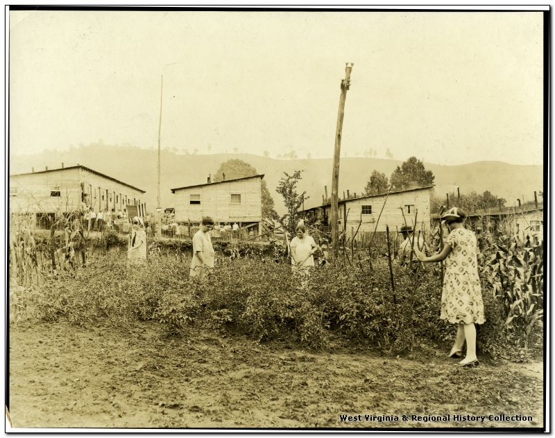 Women working in the garden in a barrack village near Fairmont, West Virginia