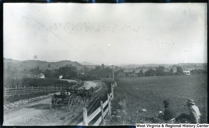 Buggy on road near Mount Crawford, VA, with Walter and Thomas Biscoe sitting in field at right.