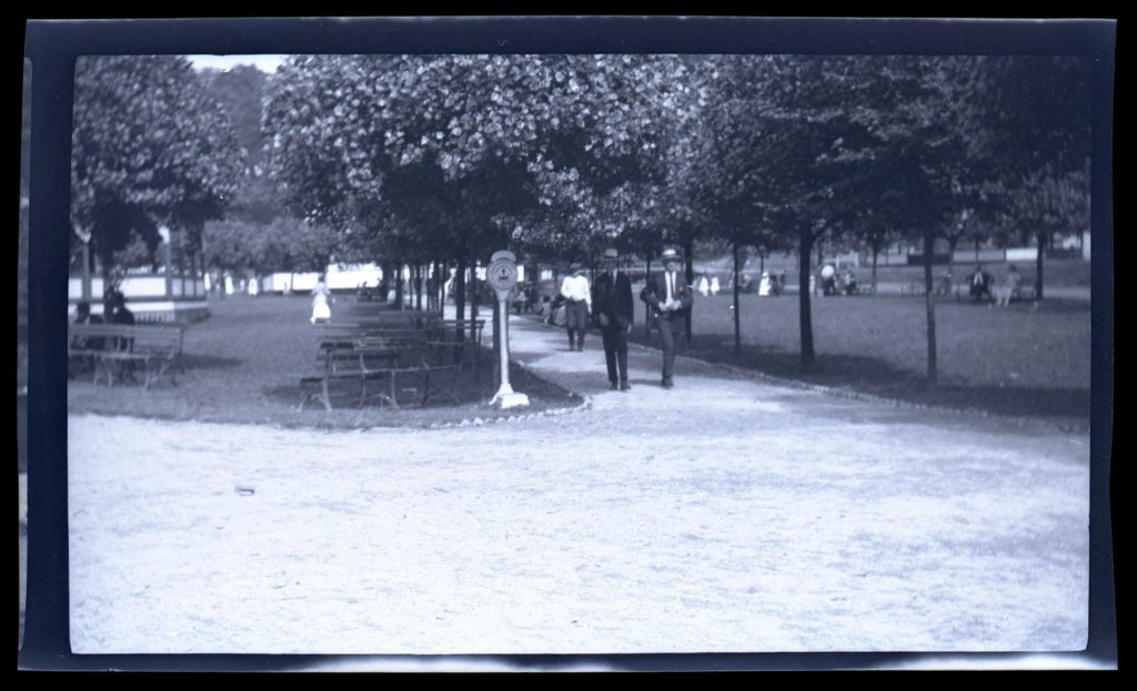 Grounds at Oakford Park showing picnic tables and people strolling