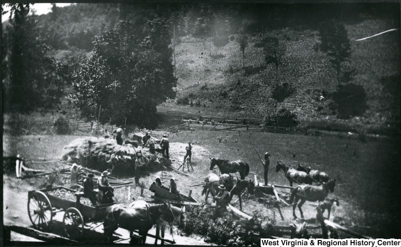 Men and horses, threshing wheat near Troy, Gilmer County. July 9, 1884