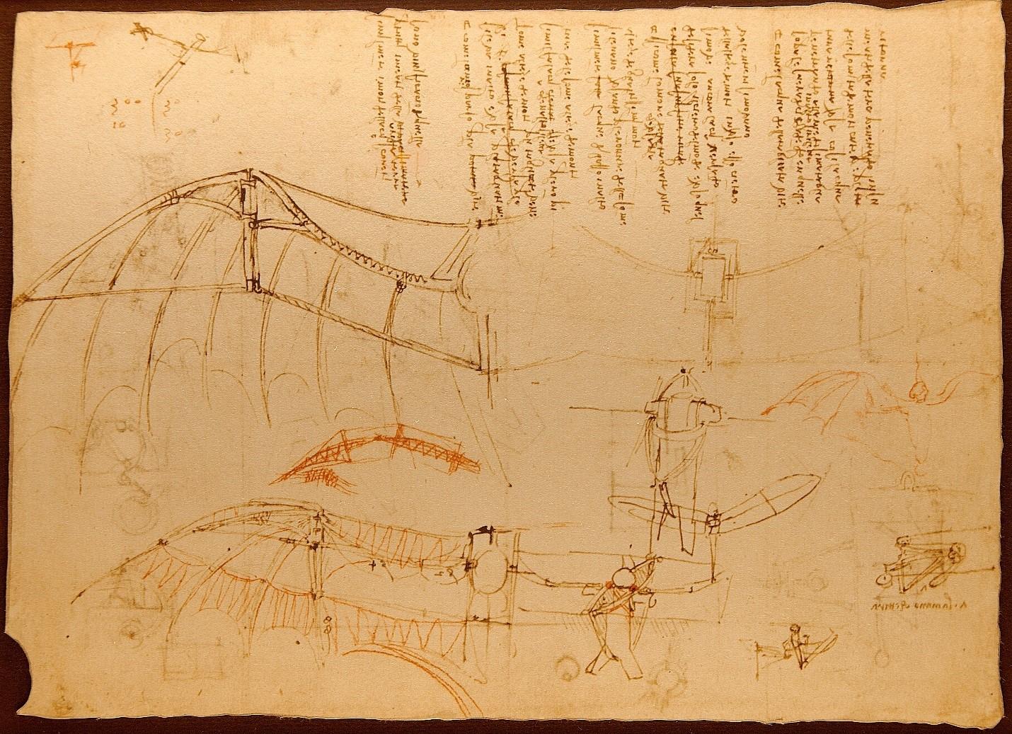 Leonardo da vinci essay helicopter