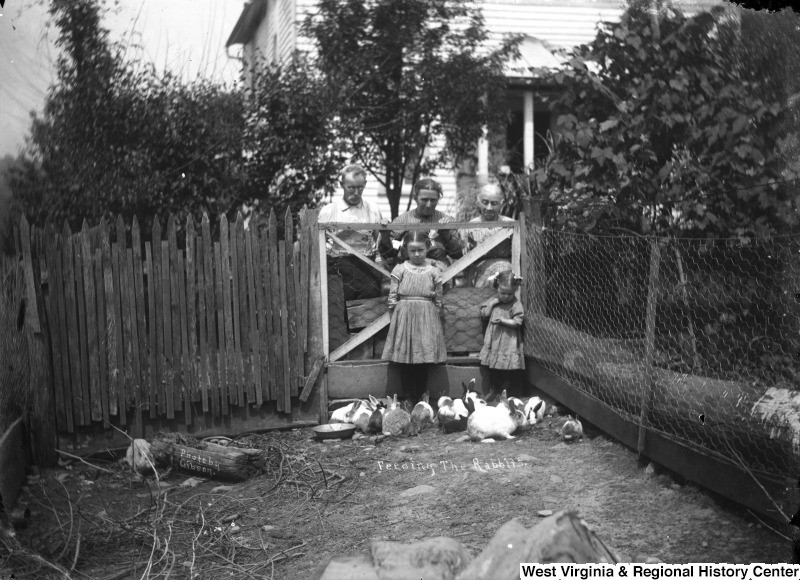 Two children feeding rabbits as adults look on