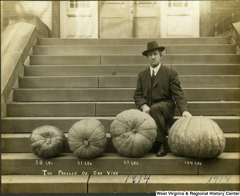 Harvey Harmer seated with four pumpkins in 1914