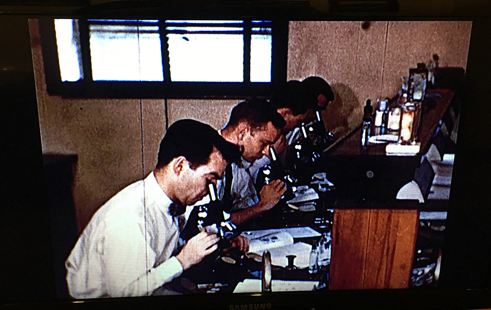 Screenshot from film showing students using microscopes