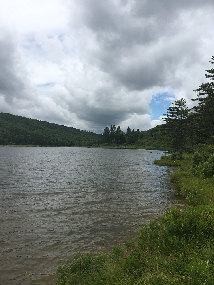 A partial view of Spruce Knob Lake, July 2017