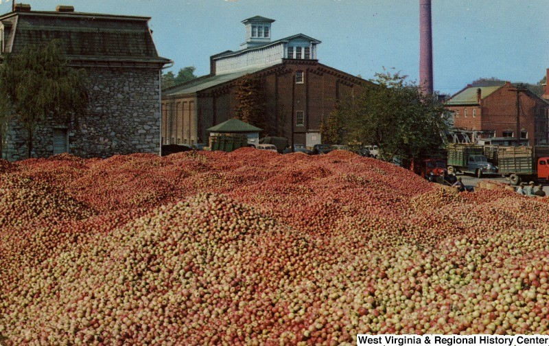Thousands of Apples Mounded between buildings