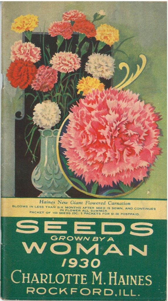 Charlotte M. Haines seed catalog, 1930, showing carnations