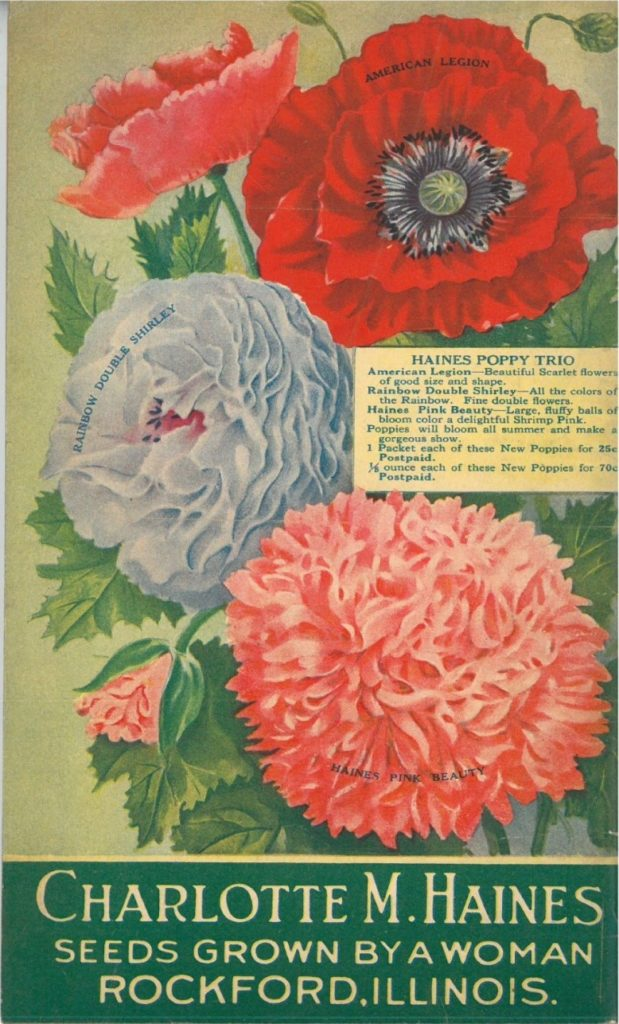Charlotte M. Haines seed catalog, showing poppies