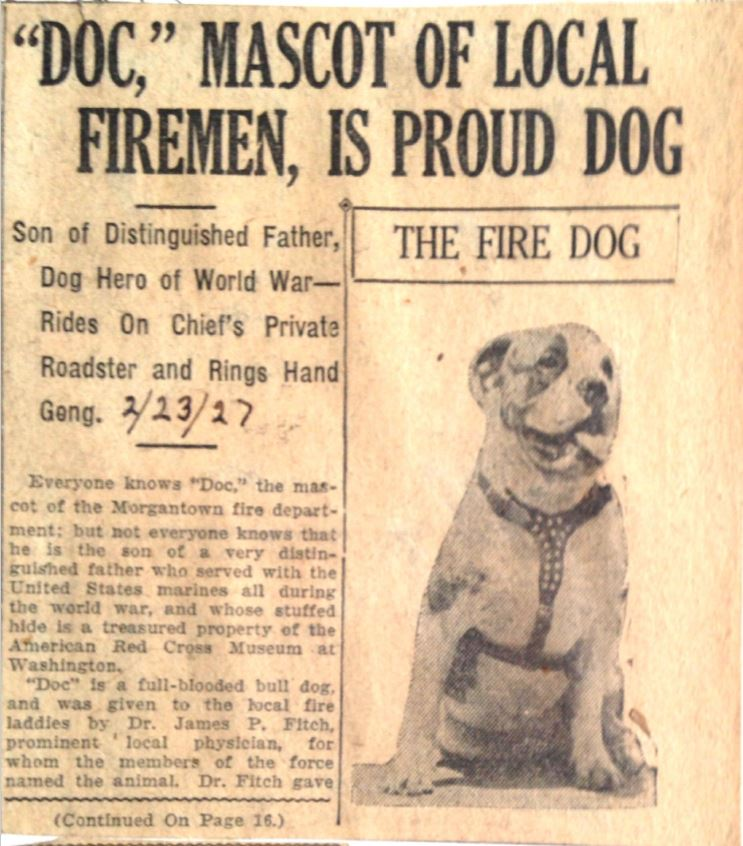 Second part of newspaper article about Doc the local fire dog mascot, including an image of Doc