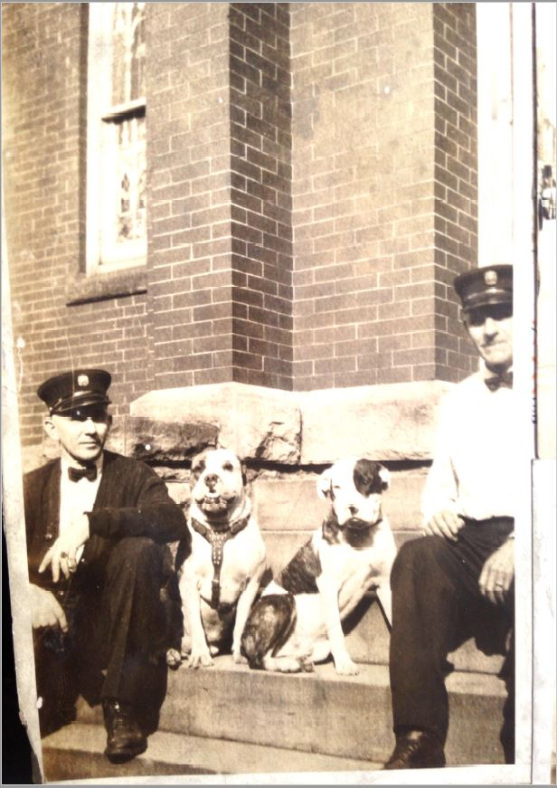 Doc and another bulldog, possibly his son, seated on steps next to two men