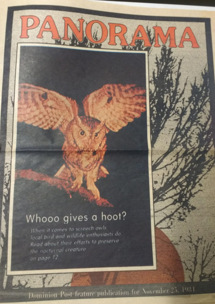 "Newspaper ""feature publication"" cover with image of owl and headline ""Whooo gives a hoot?"""