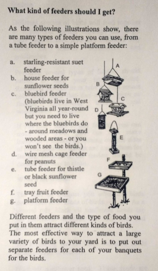 "Clipping with heading ""What kind of feeders should I get?"" showing seven types of bird feeders"