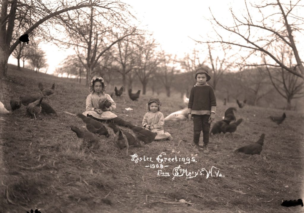 "Three children in orchard surrounded by chickens, with text ""Easter Greetings -1909- From St. Mary's W. Va."""