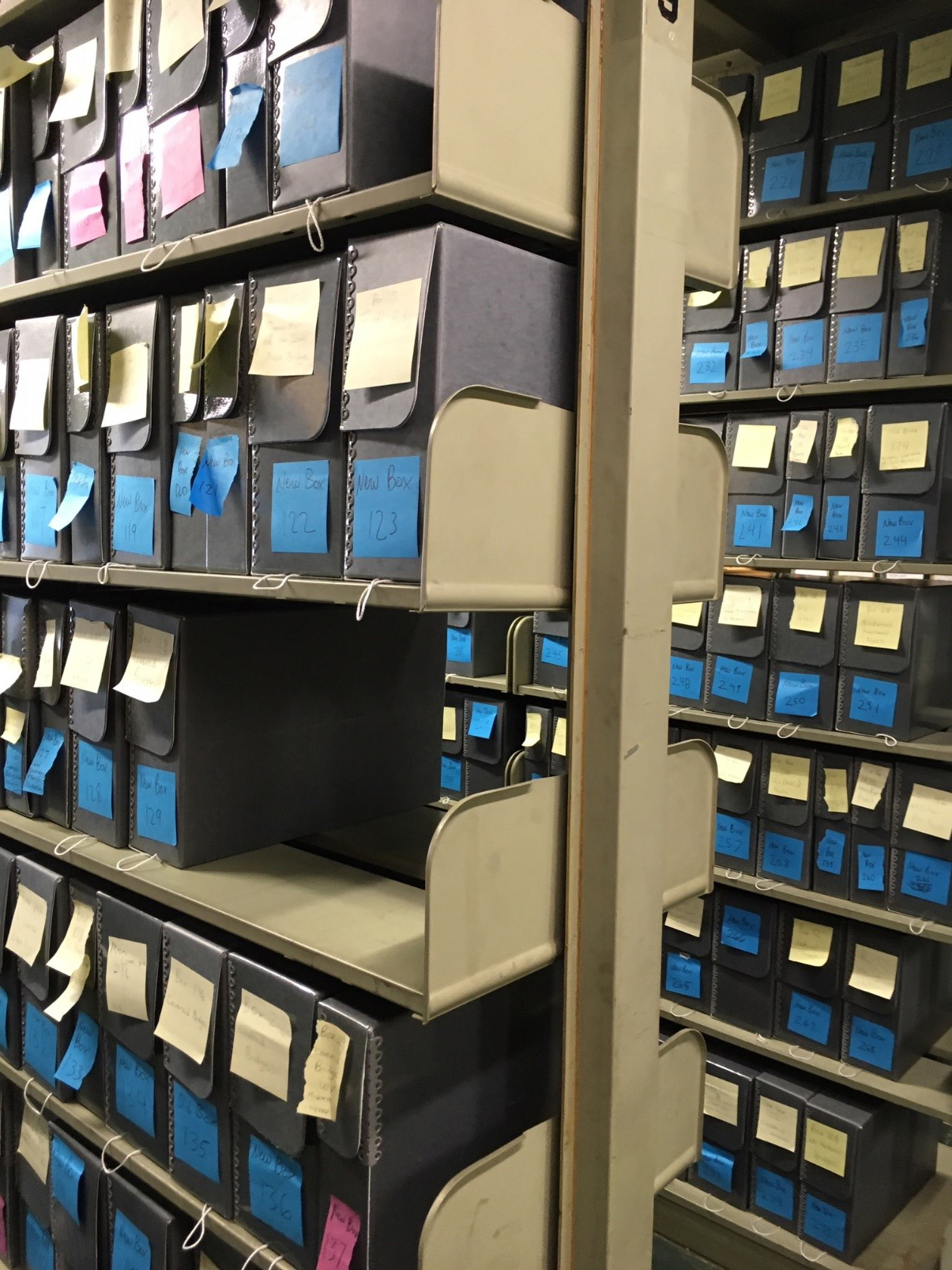 Document cases marked with post it notes, arranged on shelves