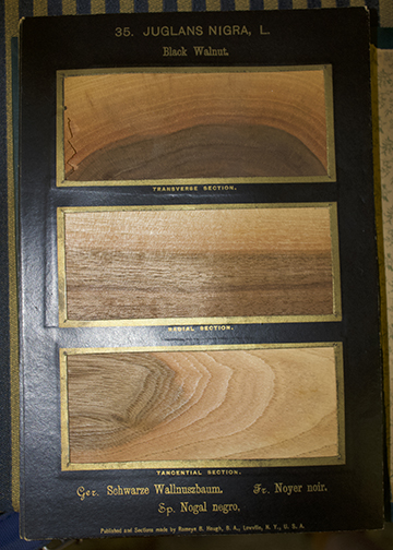 samples of wood blocks