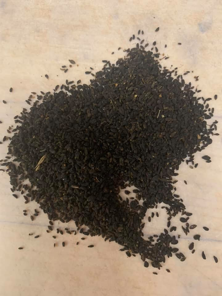 Pile of black anise seeds