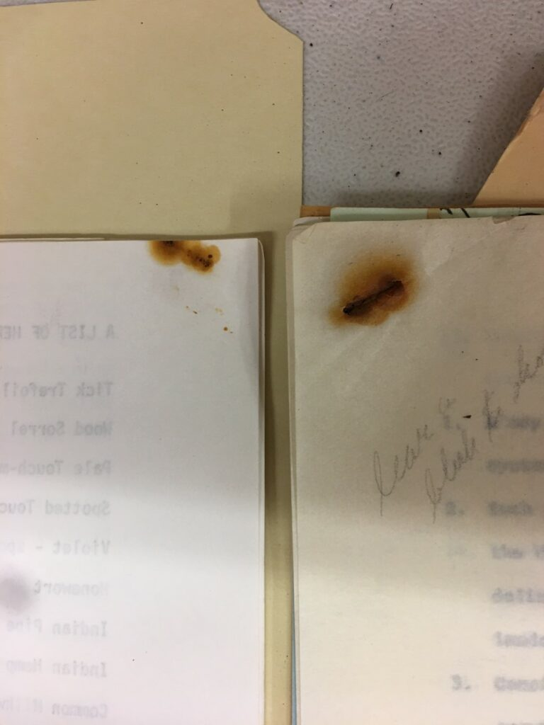 rust marks on paper, left by a rusty staple