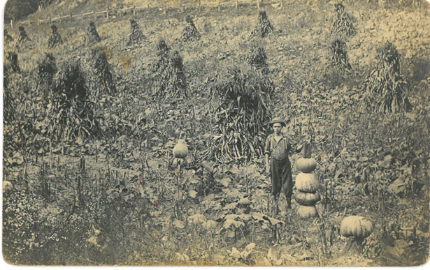 A young man stands in a field with stacked pumpkins and shocks of corn