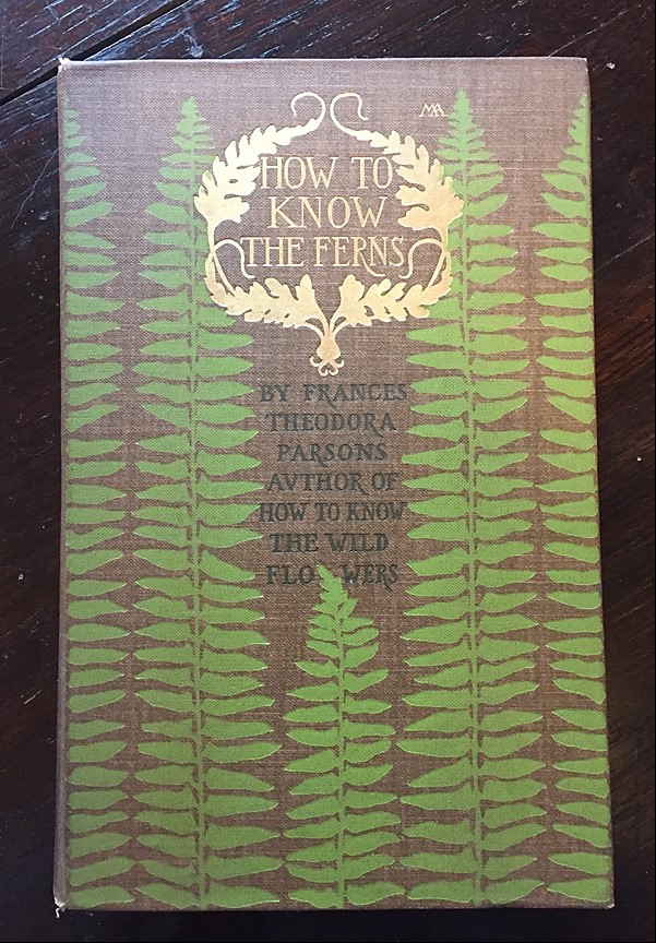 Cover of book, How to Know the Ferns