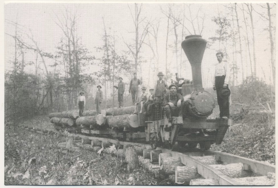 People standing on a train carrying logs